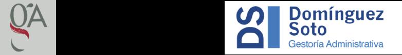 Logo Gestoría DS